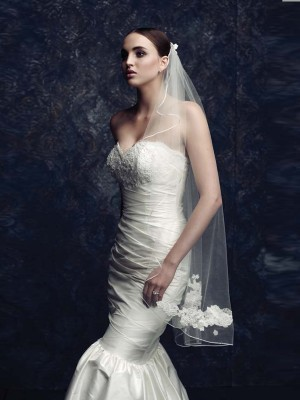 Gorgeous Tulle Wedding Veil